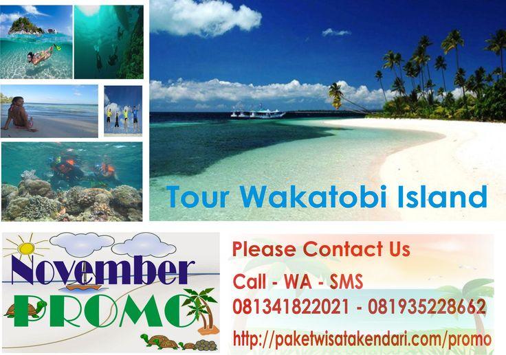promo tour wakatobi