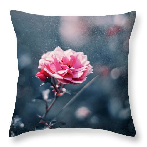 Rose Throw Pillow featuring the photograph Pink Romantic Rose by Oksana Ariskina. A Pink Garden Summer Rose flower in a sparkling bokeh gray, navy blue abstract background. Available as mugs, posters, greeting cards, phone cases, throw pillows, framed fine art prints, metal, acrylic or canvas prints, shower curtains, duvet covers with my fine art photography online: www.oksana-ariskina.pixels.com #OksanaAriskina