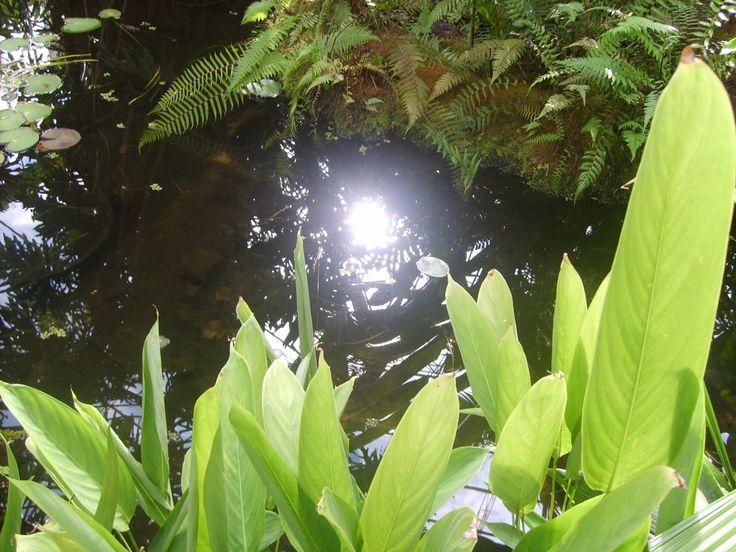 Reflejo de luz