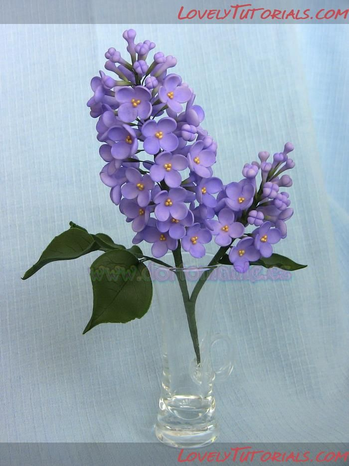 Lilac flowers tutorial