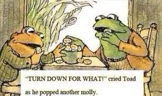 #lmfao #funny #molly #drugs #toads