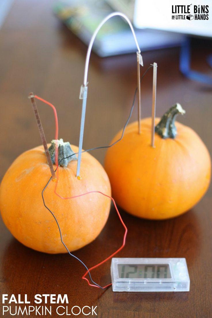 Pumpkin stems for crafts - Pumpkin Stem Project Pumpkin Clock Using Potato Clock Kit