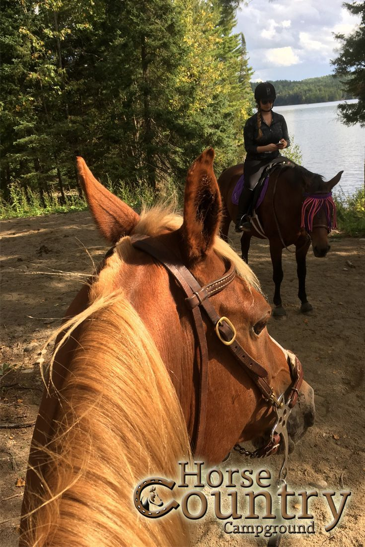 I Know A Great Place To Have Lunch!  This experience combines a lesson and guided horseback ride, along with a fun picnic lunch out on the trail.