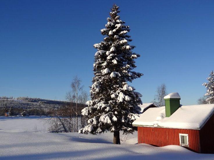 Pello winter landscape from the Tornio River shore