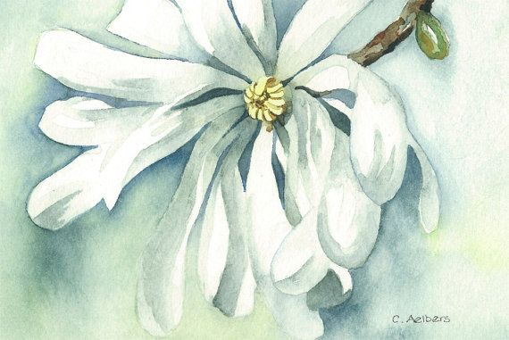 Spring Time Blossom Magnolia  Original Watercolor Painting