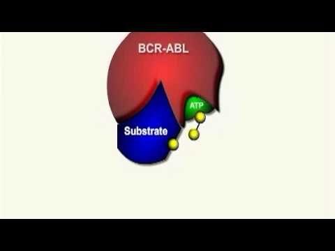 Výsledek obrázku pro imatinib mechanism of action