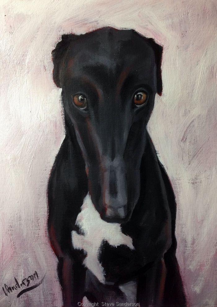 Here's looking at you kid.. Steve Sanderson Art