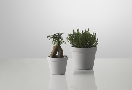 Muuto - Designs - Home Accessories - flower pots - Outside In - Designed by Thomas Bernstrand - muuto.com