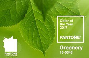 Color of the Year 2017 Greenery | lartdevivre - arredamento online