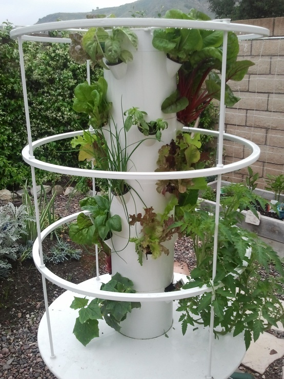17 best Aquaponics design images on Pinterest Aquaponics - der vertikale garten live screen danielle trofe