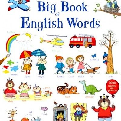 'The Usborne Big Book of English Words' - a colourful picture word book illustrating around a thousand everyday words, with online pronunciation.