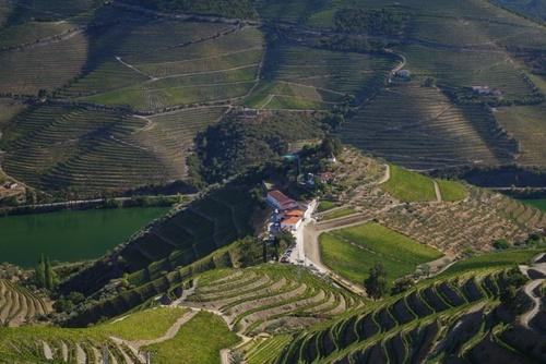 Quinta do Crasto, Douro
