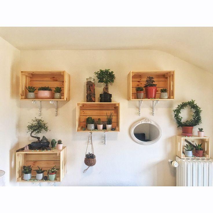 🍃Notre nouveau mur végétal🌷🌵 . . Pas peu fière de nous, depuis le temps que je l'attendais .. 🍂 Merci mon amour @taonarmol sans qui cela n'aurait pas été possible.. Sans ta patience & ton savoir faire 💜 . . . #home #deco #murvegetal #homemade #flowerswall #handmade #suculentasycactus #sucullent #plants #love #homesweethome #miroir #suspension #creation