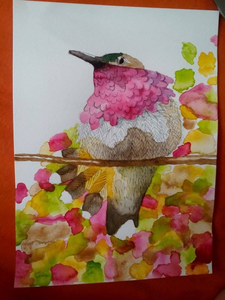 bird, watercolor, aquarelle, aquarel, burung kolibri