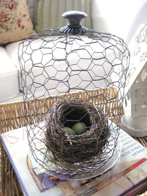 chicken wire cloche...