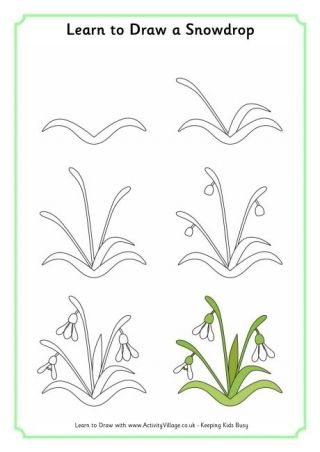 how to draw spring flowers