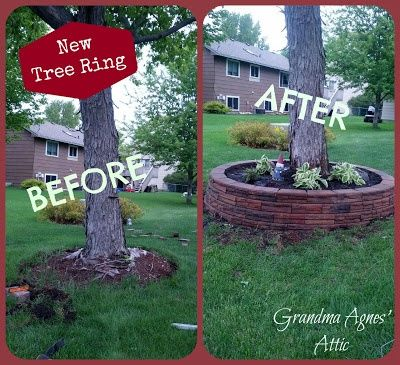 Easy brick tree ring backyard oasis pinterest for Tree landscaping ideas