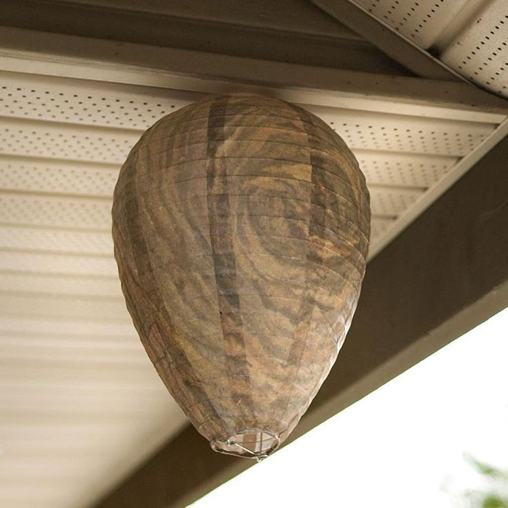 Faux wasp nest - natural deterrent - could easily make this out of papier mache