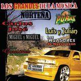 Los Grandes de la Musica Nortena [CD], 12159970