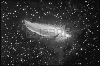 rouw%3A+White+feather+vallen+van+nachtelijke+hemel+