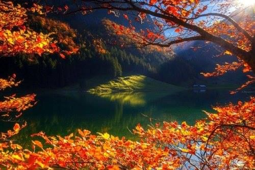 the window in autumn .. Photo by Andrew Bazanov... http://ift.tt/2kfW81y