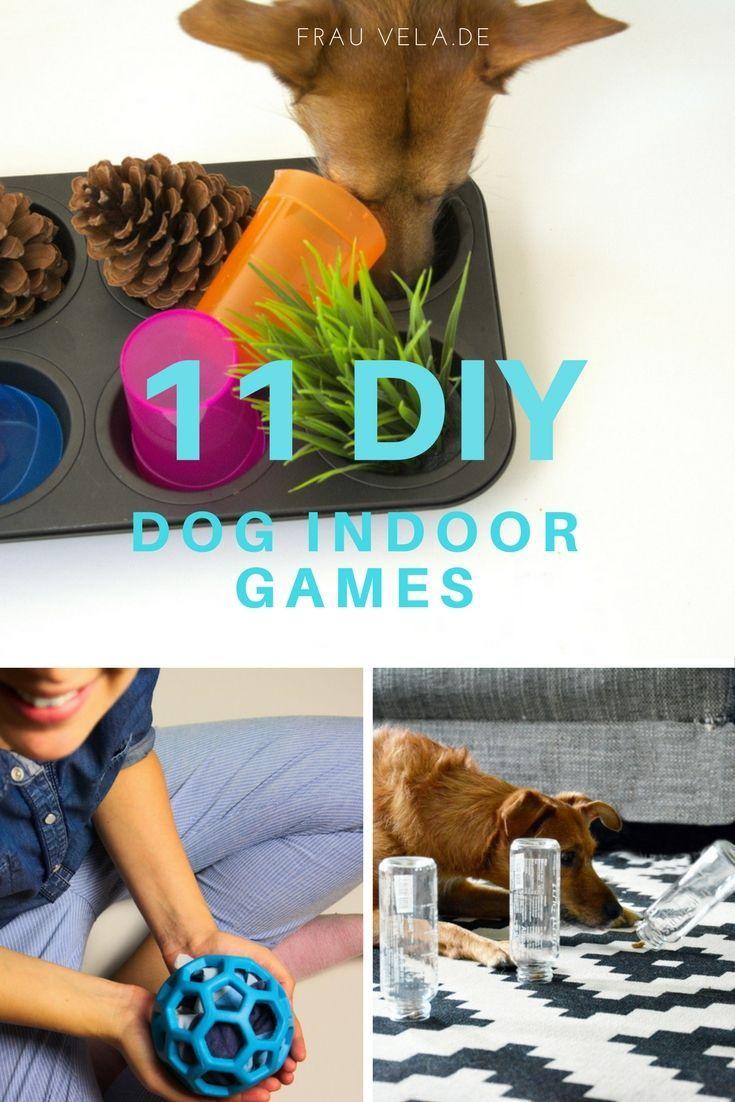 DIY Hundespielzeug |