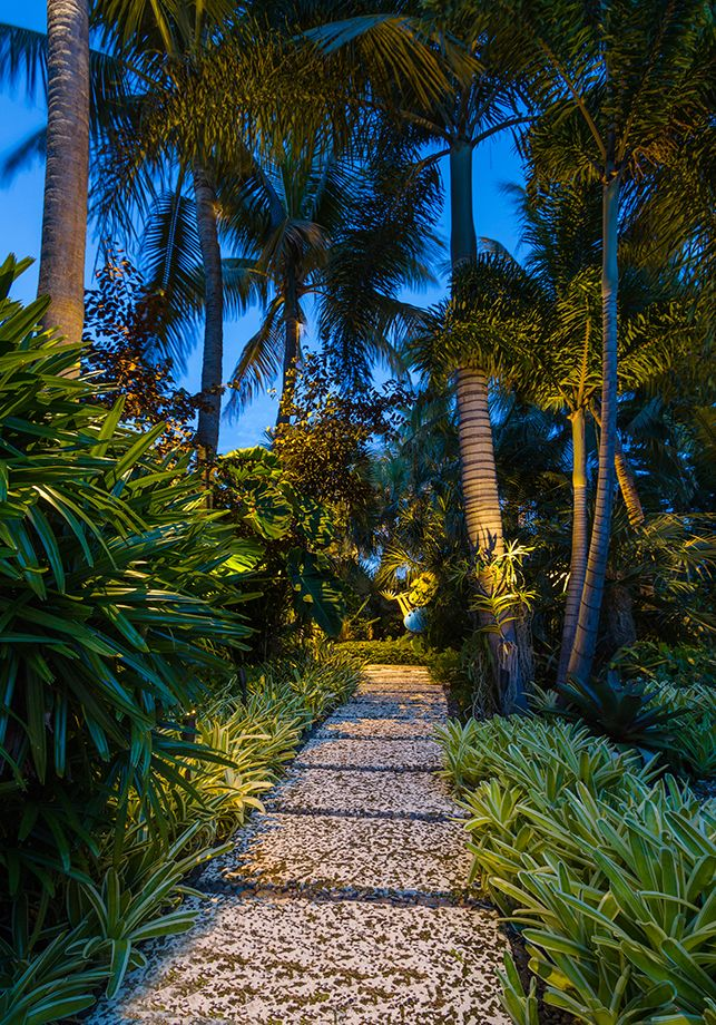 tropical outdoor lighting. landscape lighting outdoor living low voltage tropical garden