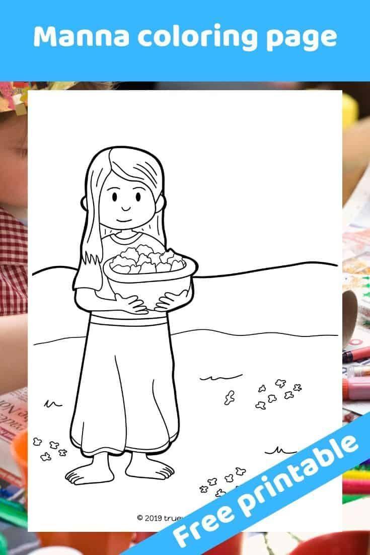 10+ God provides manna and quail coloring page HD