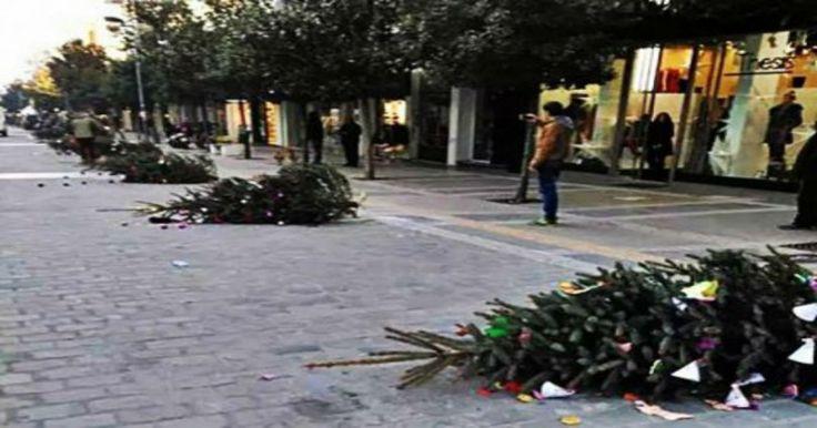 Χαμός στις Σέρρες: ξήλωσαν και πέταξαν στον δρόμο όλα τα Χριστουγεννιάτικα δέντρα! (photos) Crazynews.gr