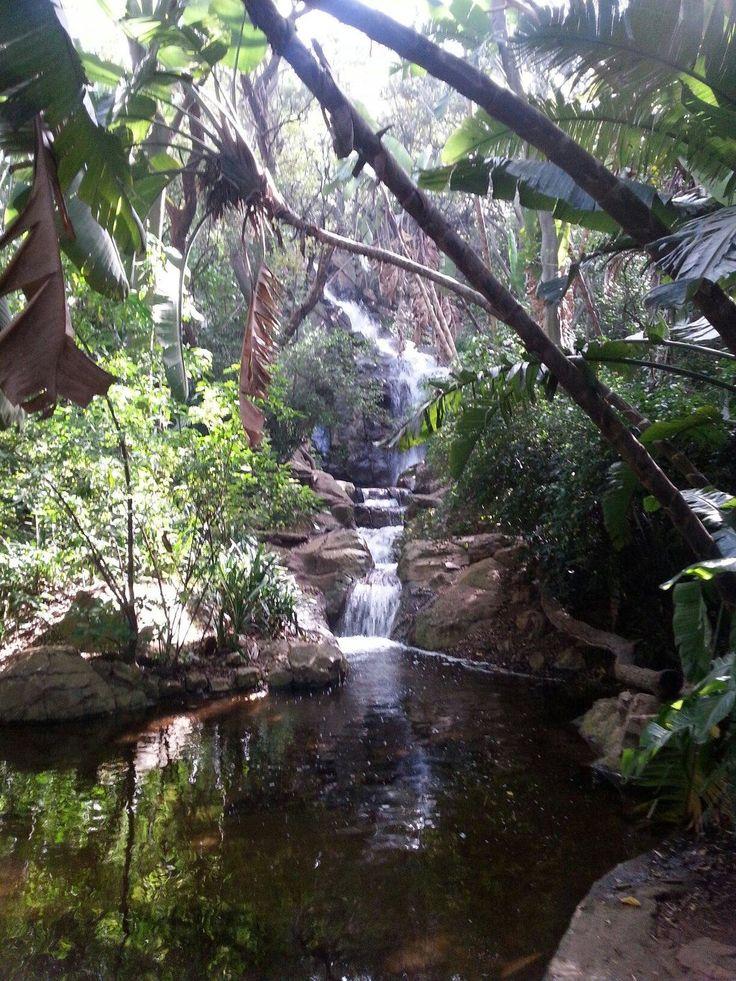 Pretoria National Botanical Garden (South Africa): Address, Phone Number, Attraction Reviews - TripAdvisor