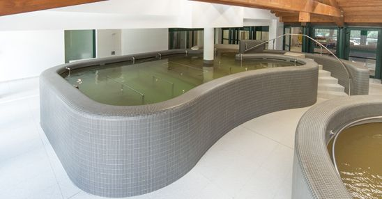 Swimming Pool produced by Preformati Italia for Pejo Thermal Center - Design by Studio Tesi (www.studiotesi.it)
