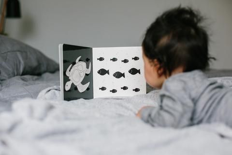 These black & white development book for newborns 0-6 months aide visual stimulation, concentration, brain development and more! A must-have product!