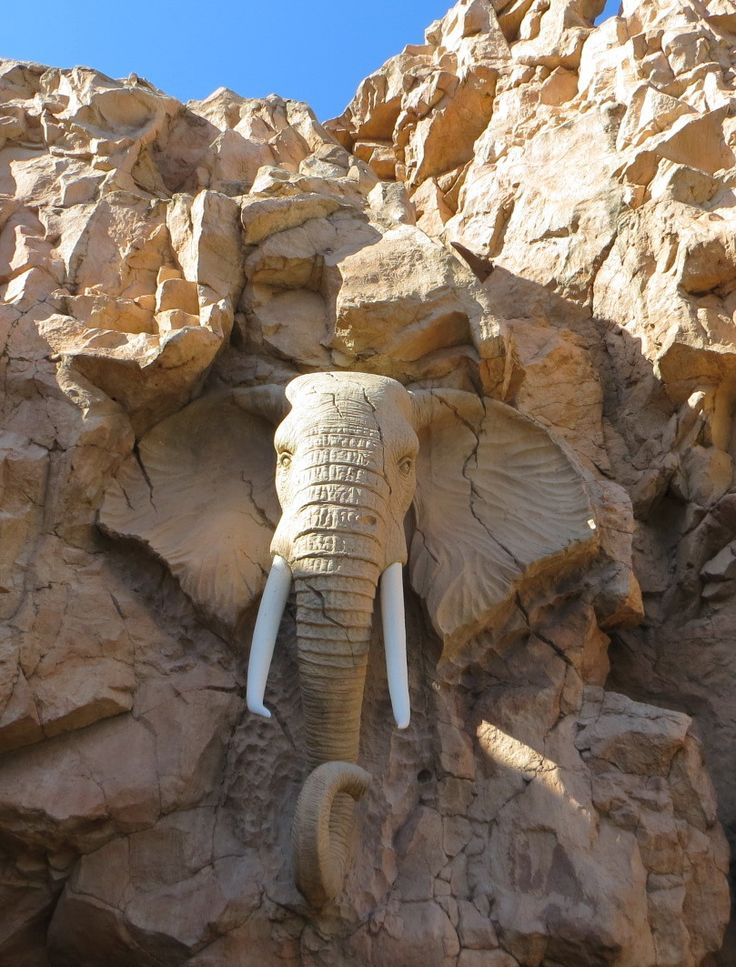 Rock-carved elephant at Sun City Resort, South Africa (by Jorge Brazil).
