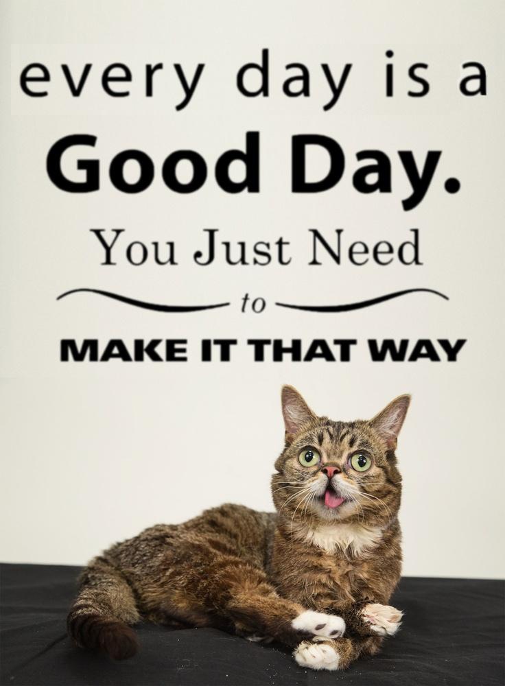 Lil' Bub & good inspiration - Make today a good day :)