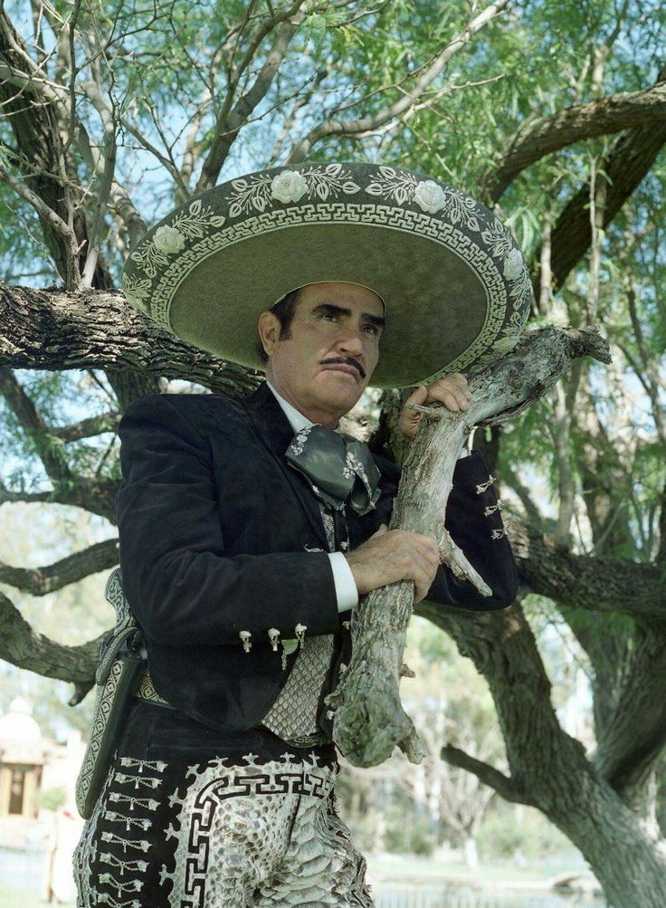 Lyric la ley del monte lyrics in english : 186 best Vicente Fernandez images on Pinterest | Mexicans, Viva ...