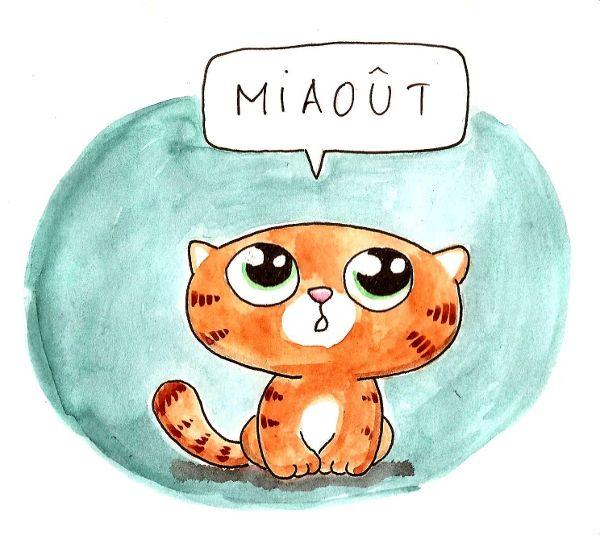 Le 15 août, fête des chats !