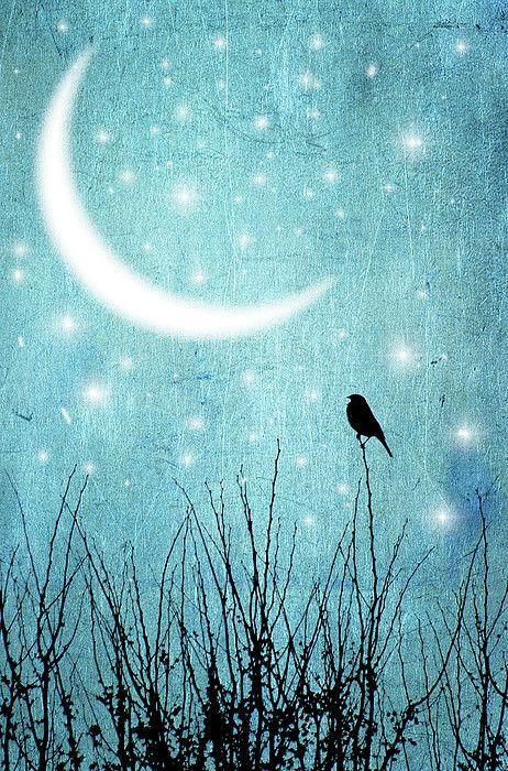 Moonlight Sonata by artist Marta Nardini