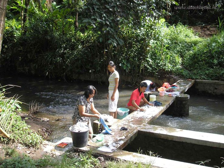 Ubud NyuhKuning in my kampung Bali