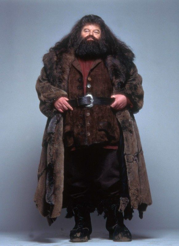Rubeus Hagrid (portrayed by Robbie Coltrane) was born 6 December 1928 in the Forst of Dean West Country England
