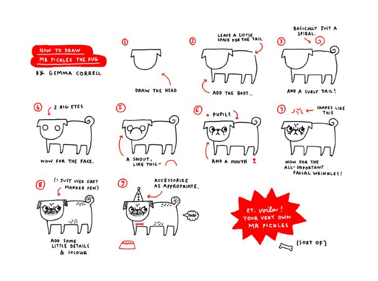 Dibuja un pug - How to draw a lovely pug - doggies ♥