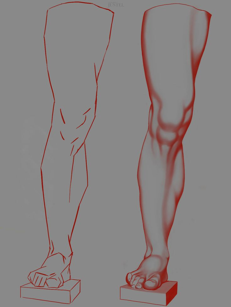 Bargue - Anatomy 2013 - 2D Version - LEG