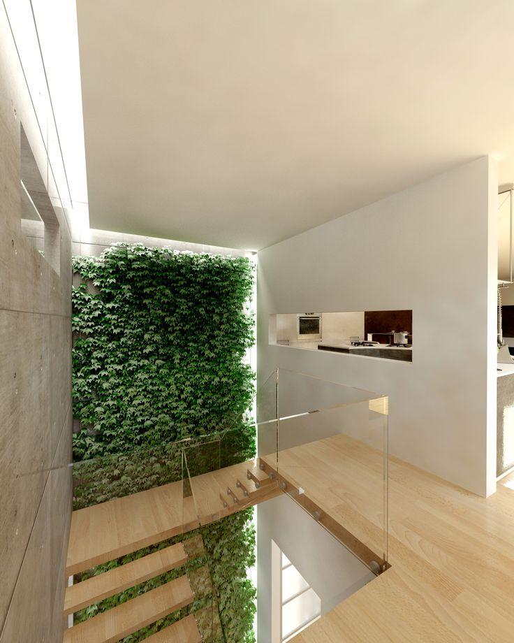 Növényfal- látványterv / Vertical garden - architectural visualization