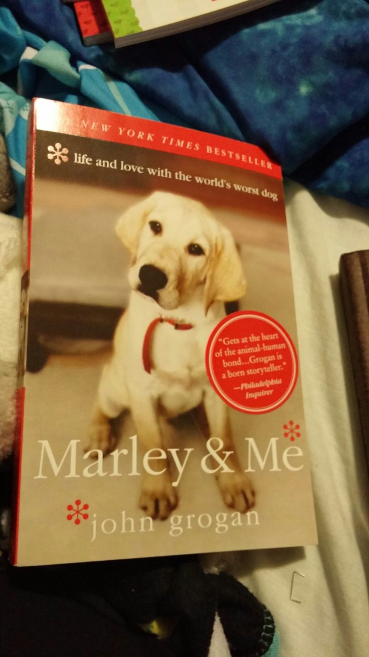 My Brand New Marley & Me Life And Love With The World's Worst Dog  Book That's Related To The Movie That I Just Bought Today From Chapters/Indigo!😄😊☺😉😍😘❤💜💙💚💛💘💞💖💕💓💗💌💋💎💍👣💝🎍