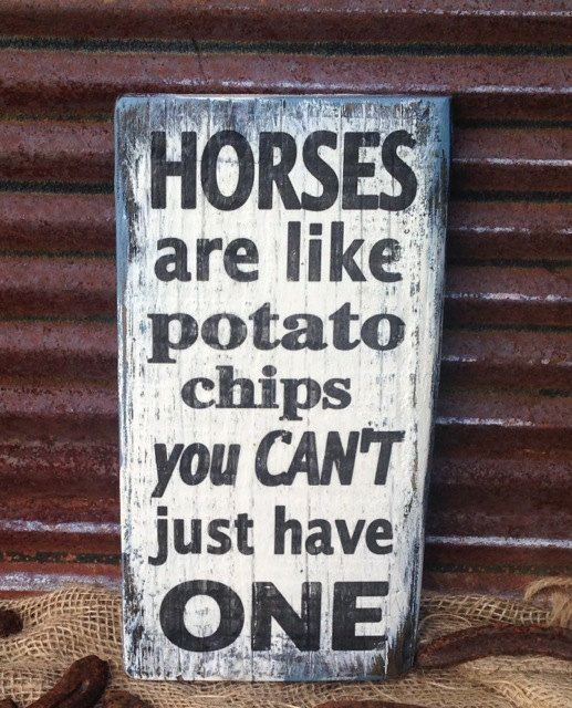 rustic wood sign for barn horse person or by