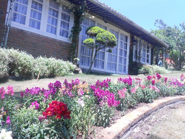 Casa das Flores - Serra Negra Bezerros - Pernambuco Setembro de 2012