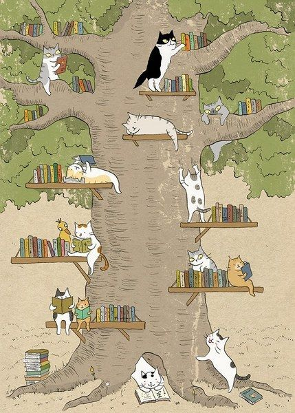 find a comfy reading spot...  - The Bibliophile Files