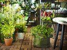 Nezapomeňte pro samou chuť do pěstování, že by vám mělo na balkoně zbýt místo i...