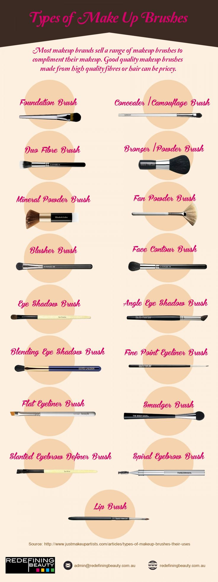 Types of Makeup Brushes Infographic