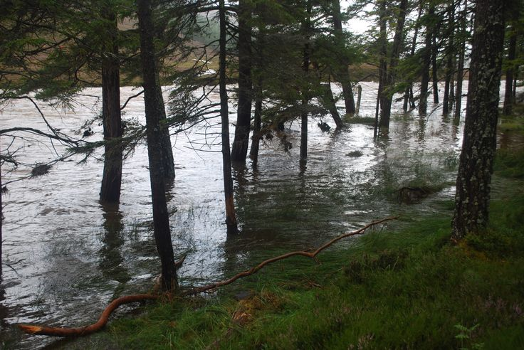 Evidence of the flooding at Mar Lodge Estate, Scotland #NTSAppeal