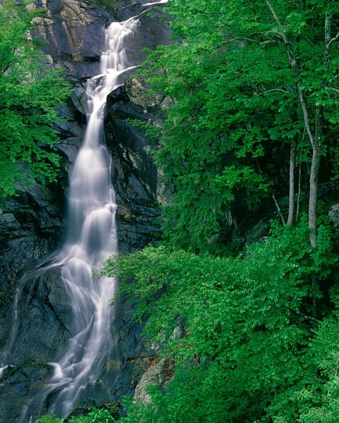 White Oak Falls, Shenandoah National Park.Buckets Lists, White Oak, Oak Fall, Lists Travel, Nat L Parks, Image, Shenandoah National Parks, Fall Water, Fall Numbers